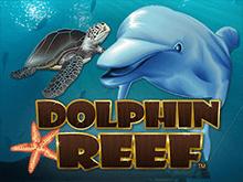 Видео-слот Dolphin Reef