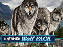Untamed Wolf Pack в азартной онлайн игре на деньги