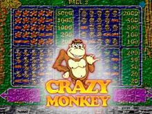Онлайн-автомат Crazy Monkey